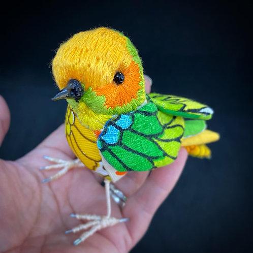 Valentines Bird Citrus