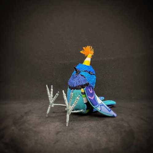 Party Fairy wren