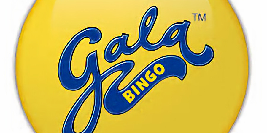 Bingo, the venue, to Support the lions
