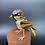 Thumbnail: Sparrow