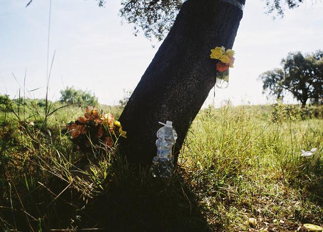 """Un entierro poco """"eco"""""""