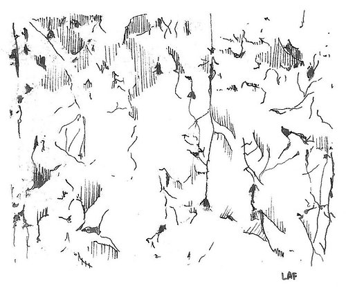 "Print de ""Campo neuronal"""