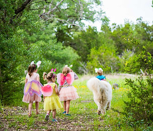 Hill Country Retreats- Fairy Party.jpg