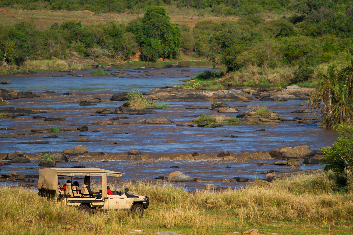 Game Drive - 11