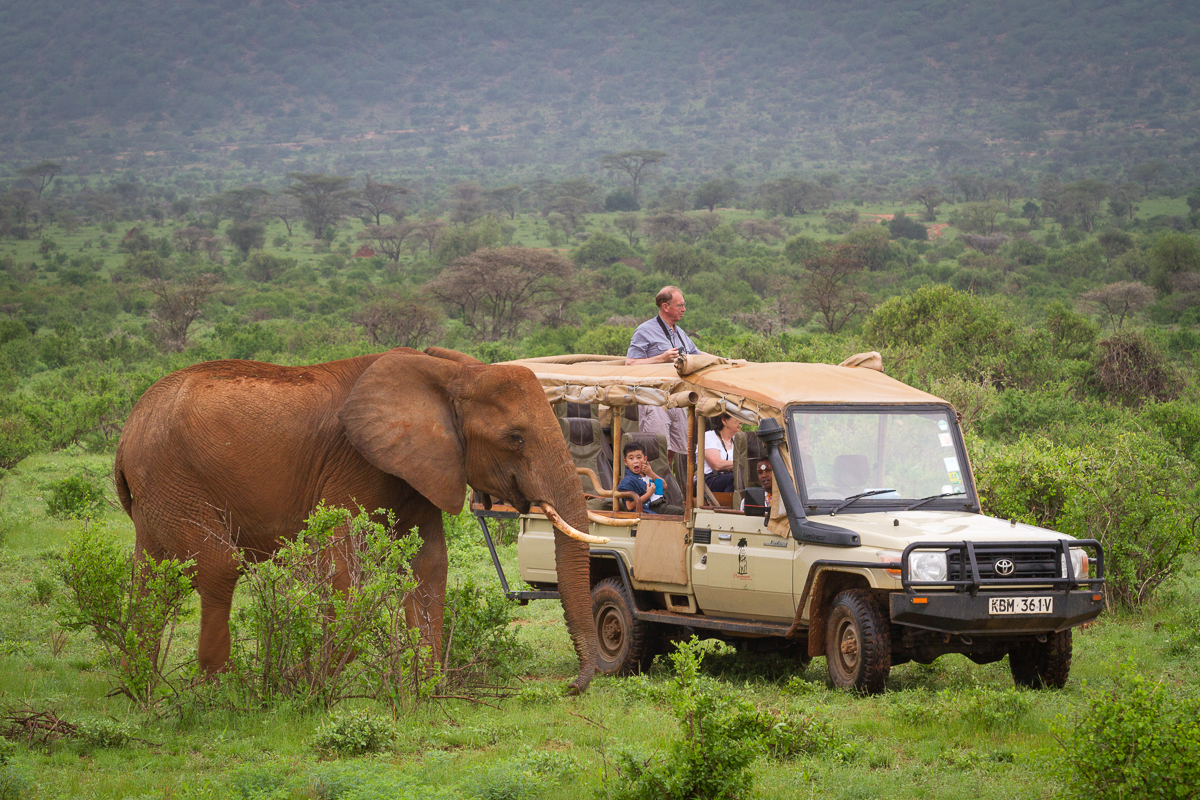 Game Drive-5