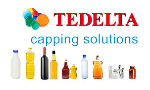 Tedelta capping solutions logo