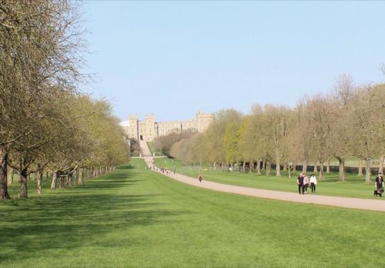 "Beautiful vista of Windsor Castle ""Long Walk"""