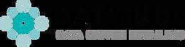 Datitude - Data Driven logo.png
