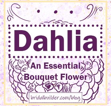 Dahlias: An Essential Flower Consideration to Build a Bouquet