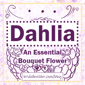 "Title: ""Dahlia - An Essential Bouquet Flower"" and ""bridalbuilder.com/blog"" with a hand-drawn dahlia sketch in the background. Colors: purple, yellow/gold"