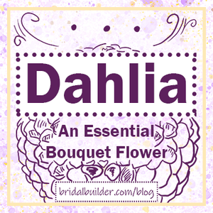 """Title: """"Dahlia - An Essential Bouquet Flower"""" and """"bridalbuilder.com/blog"""" with a hand-drawn dahlia sketch in the background. Colors: purple, yellow/gold"""