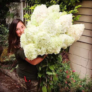 A lovely brunette woman is hugging a large bunch of white hydrangeas and smiling toward the camera.