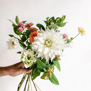 A hand holds a loose bouquet of white dahlia, white lisianthus, greenery, and various pink and orange flowers against a white background.