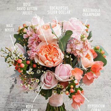 A bouquet of peach and pink flowers sits with labels for each flower type written in white.