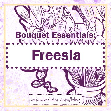 "Title: ""Bouquet Essentials: Freesia"" in purple with a hand-drawn bouquet of freesias in a vase in the background. THe background is purple and gold watercolor texture and there is a rectangular gold border around the edge of the graphic."