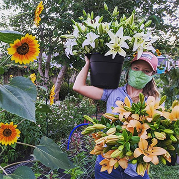 A woman wearing a green face mask holds a pot of white lilies on her shoulder and a big bunch of orange lilies in her other hand, whilst walking through a trail of large orange and yellow flowers.