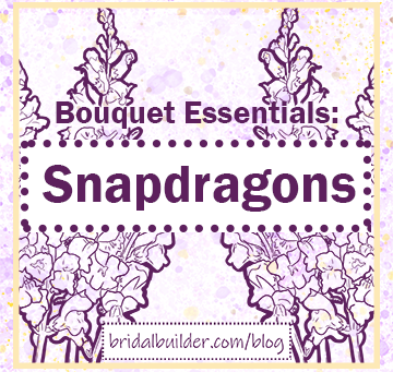 Build a Bouquet with Snapdragons