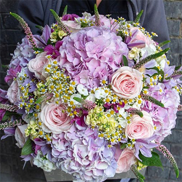 A large round bouquet of purple hydrangeas, pink roses, white baby's breath, possibly chamomile, and purple and green lavender is held in front of a grey backdrop.