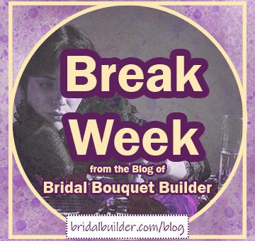 Break Week for the Blog Writer!