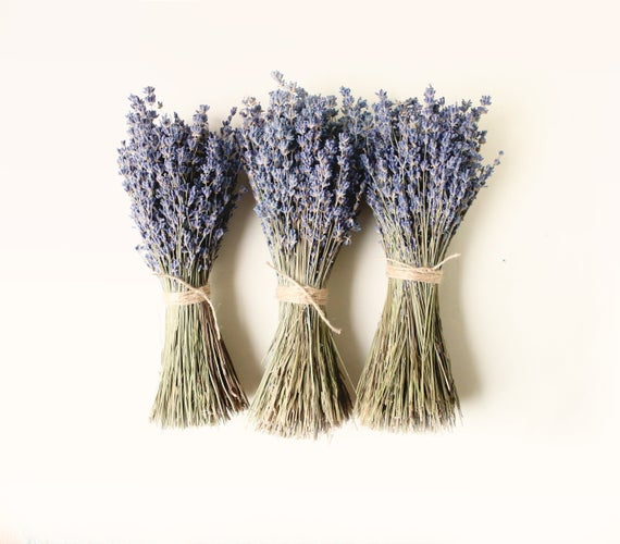 Three bundles of purple dried flowers tied with rustic twine on a white background.
