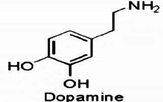 دوپامین چیست ؟