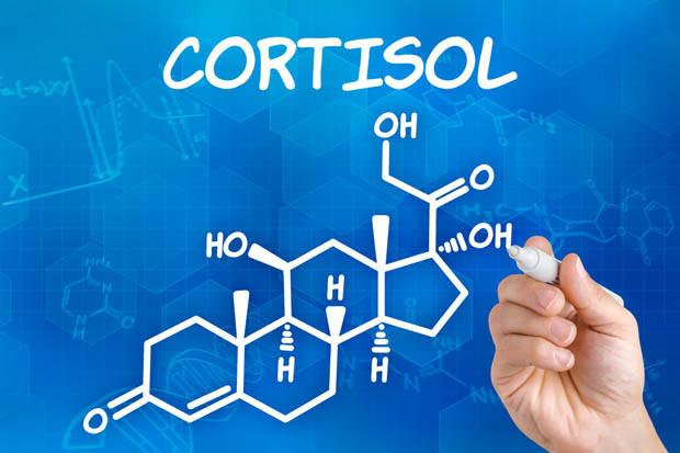 کورتیزول چیست ؟