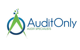 Audit Only specialist NFP SMSF private company cheap Big 4 Big4