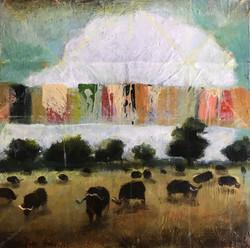 Sundowners with Water Buffalo - sold