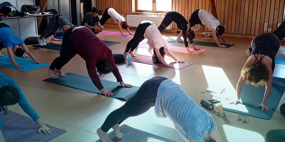 Yoga avec Laure