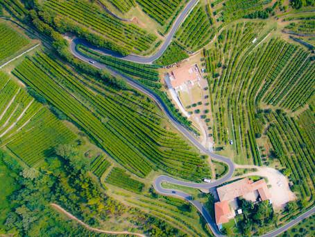 GF Luca Avesani 2020, un percorso per un territorio unico