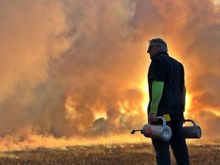 Biblically burning Zacata fields
