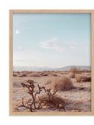 Minted Desert Hot Springs Study 3