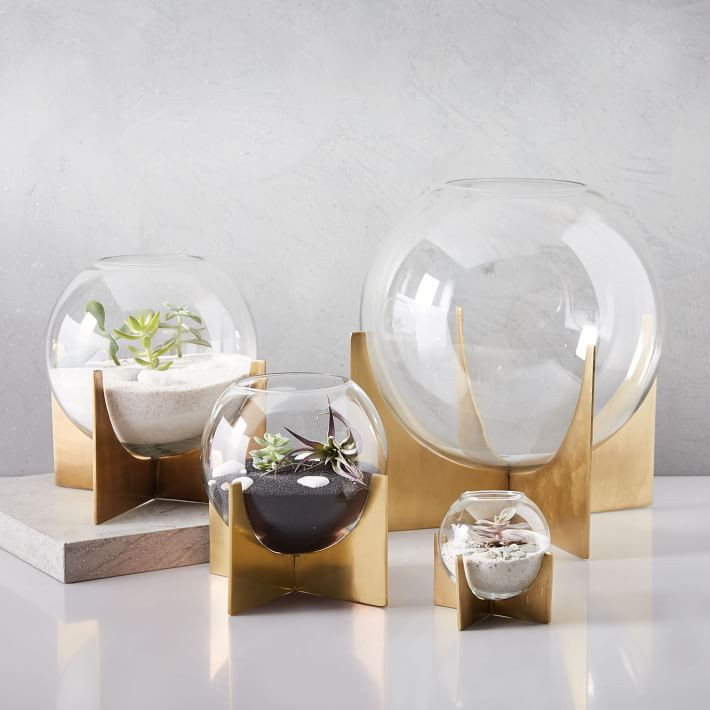 West Elm Cross Base Terrariums