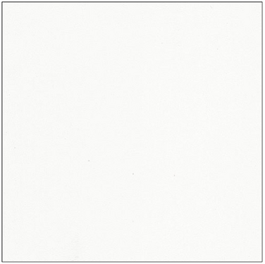 Bianco - Blanco
