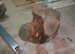 Souche de bois brut