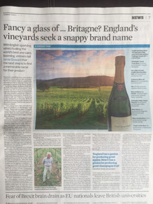 Fancy a glass of ... Britagne? England's vineyards seek a snappy brand name