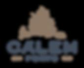 Logo_CALEM_cores-01.png