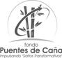 PUENTES_CAÑA.png