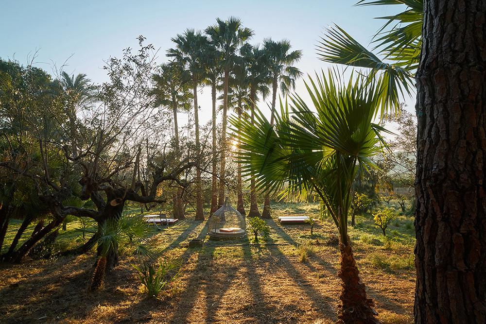El botanico de sagra2.jpg