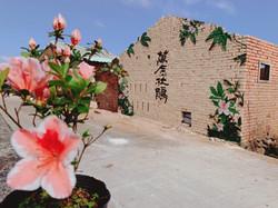 萬金杜鵑3月齊綻放豔麗盛開 老屋磚牆結合塗鴉成打卡新熱點