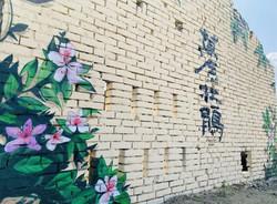 萬金杜鵑鄉 三月賞花泡湯老屋拍美照