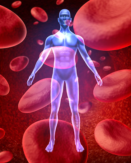 PRP, Platelet Rich Plasma, Blood Plasma, Red Blood Cells