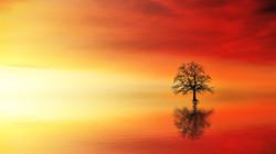 sunset-3097456_1920