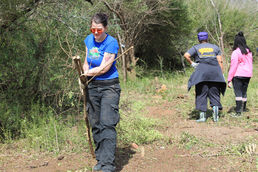 2019 Clearing Greater Mount Tabor