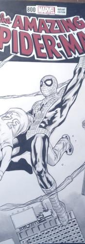 Spiderman Blankcover