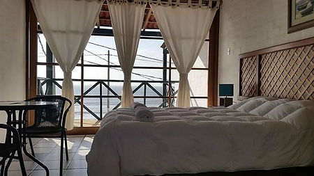 hotel-los-delfines.jpg