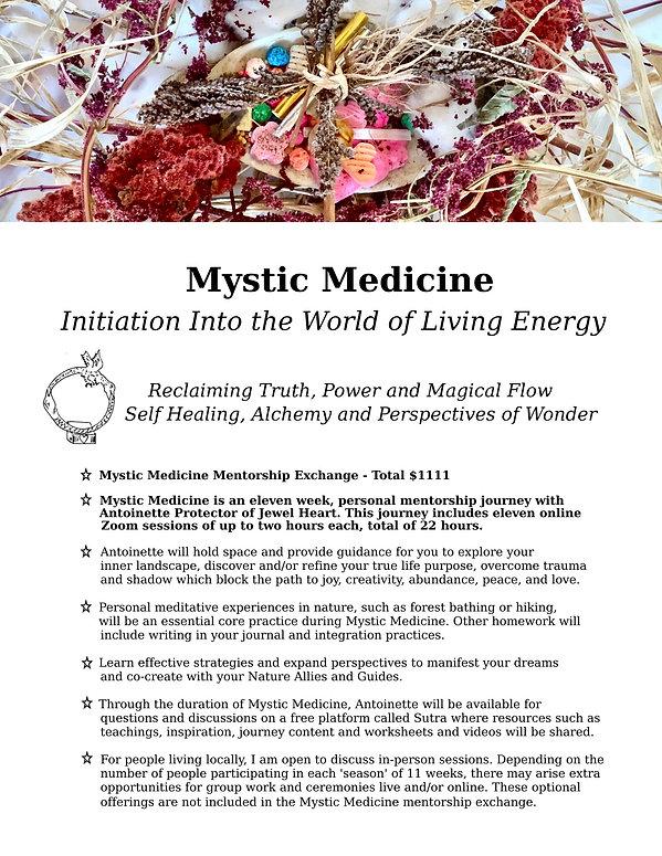 Mystic Medicine - Flyer final.jpg
