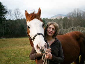 CingerE Turned Life Around for Ivy the Horse