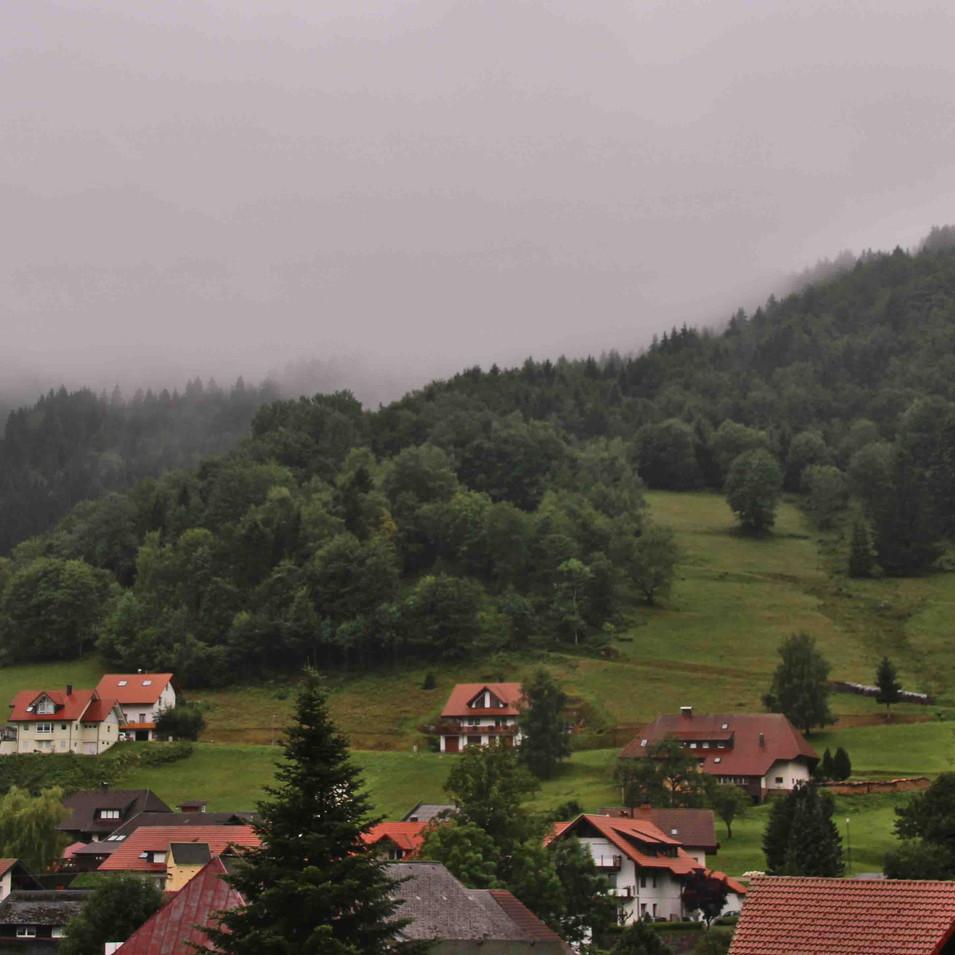 היער השחור- גרמניה
