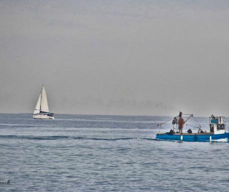 שלווה ועבודה לחופי הים התיכון